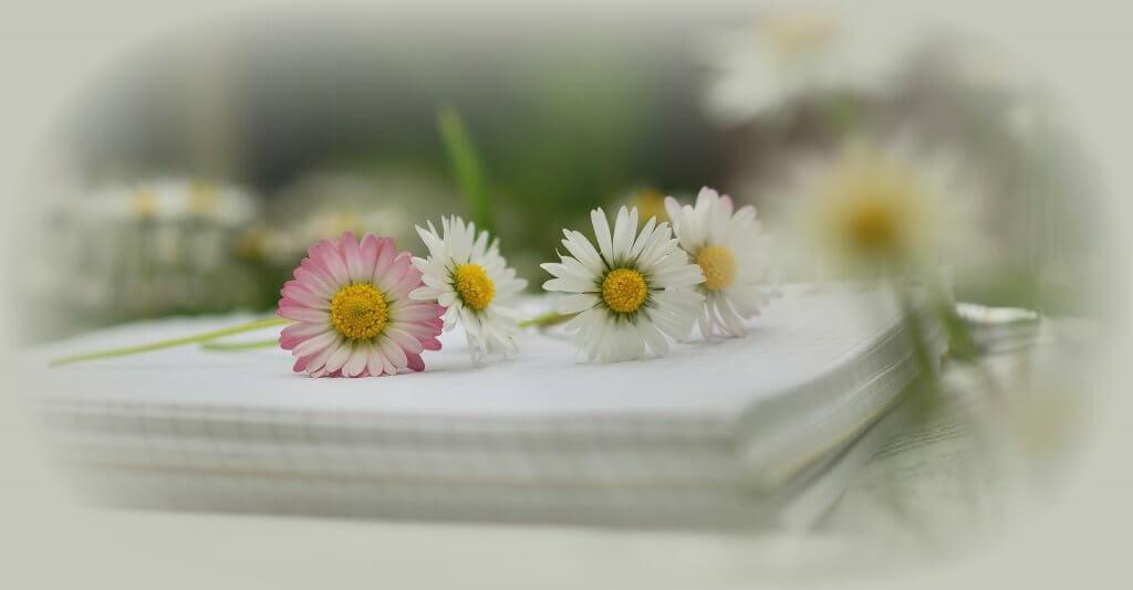 Gute Gedichte Schreiben Die 5 Besten Methoden